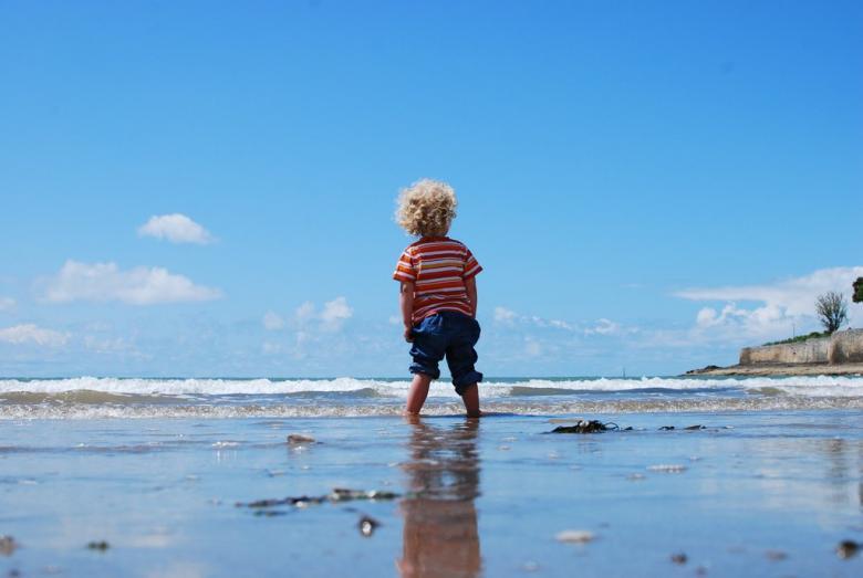 Kumsalda taş ve deniz kabukları toplayın