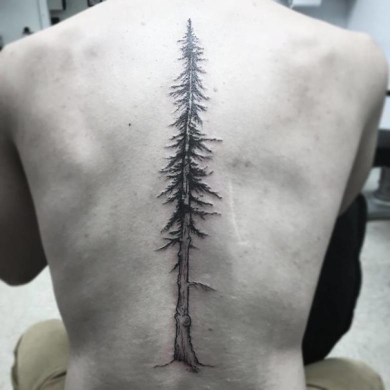 Ağaç...