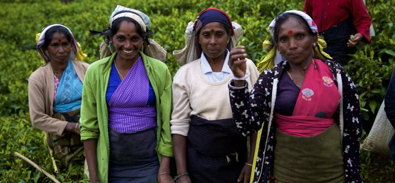 Tarlalarında çalışırlarken kendilerini çeken kameraya poz veren kadınlar