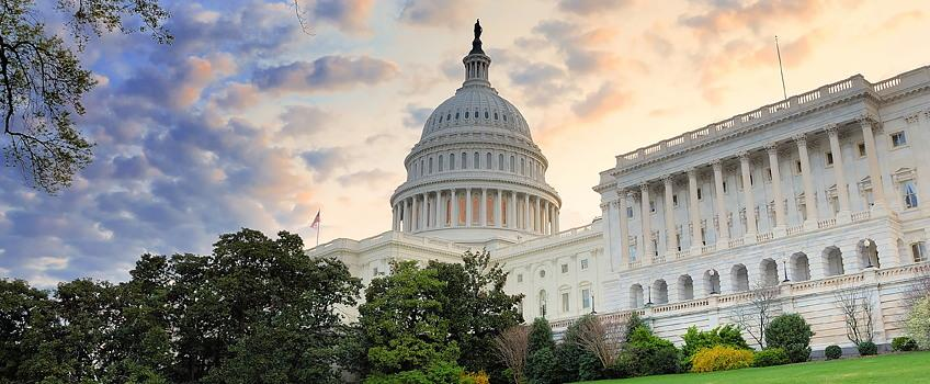 Siyaset Bilimi Proje, Tez, Ödev, Makale Konuları