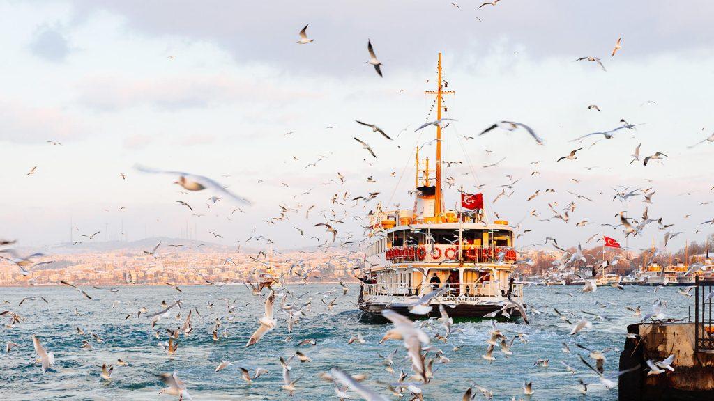İstanbul Proje, Ödev, Tez, Makale, Çeviri Yaptırma