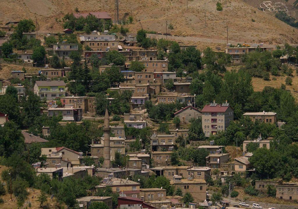 Bitlis Proje, Ödev, Tez, Makale, Çeviri Yaptırma