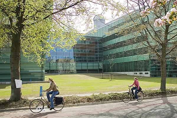 Radboud University Nijmegen Hakkında Her şey / Essay – Ödev – Tez – Makale – Çeviri – Niyet Mektubu Yaptırma