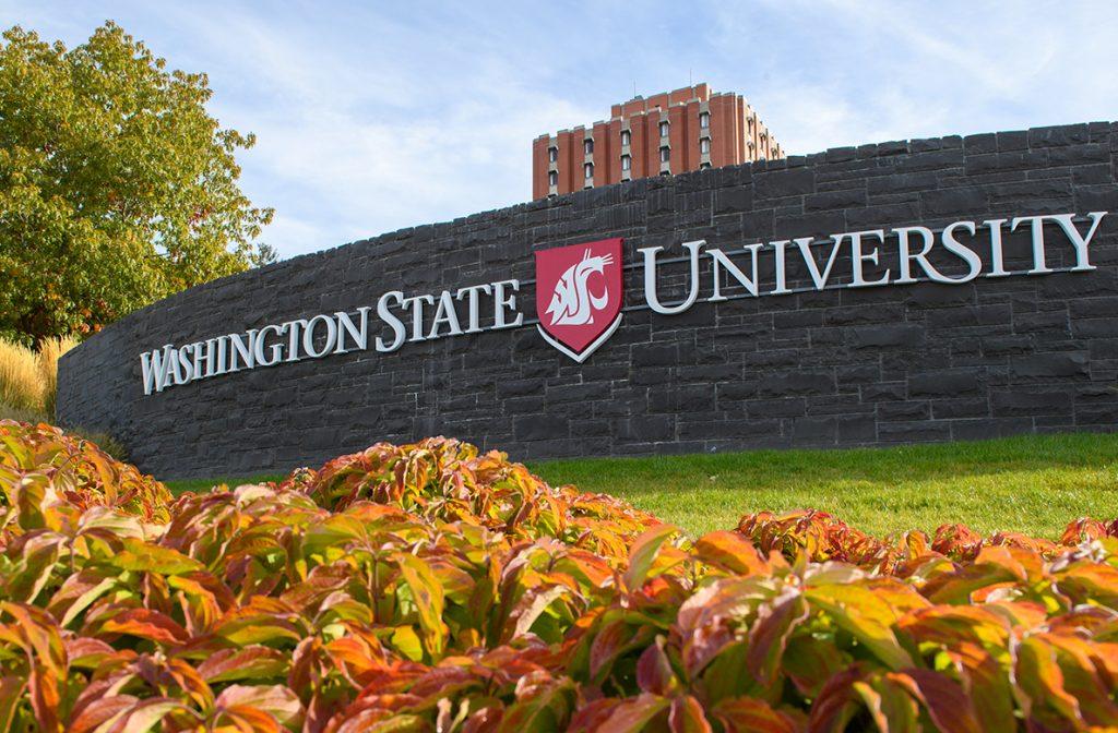 Washington State University Hakkında Herşey Essay – Ödev – Tez – Makale – Çeviri – Niyet Mektubu Yaptırma