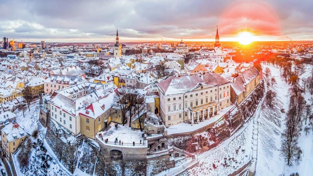 Doktora Eğitim Programı - Estonyaya'da Doktora - Ödevcim – Essay – Ödev – Tez – Makale – Çeviri – Niyet Mektubu Yaptırma
