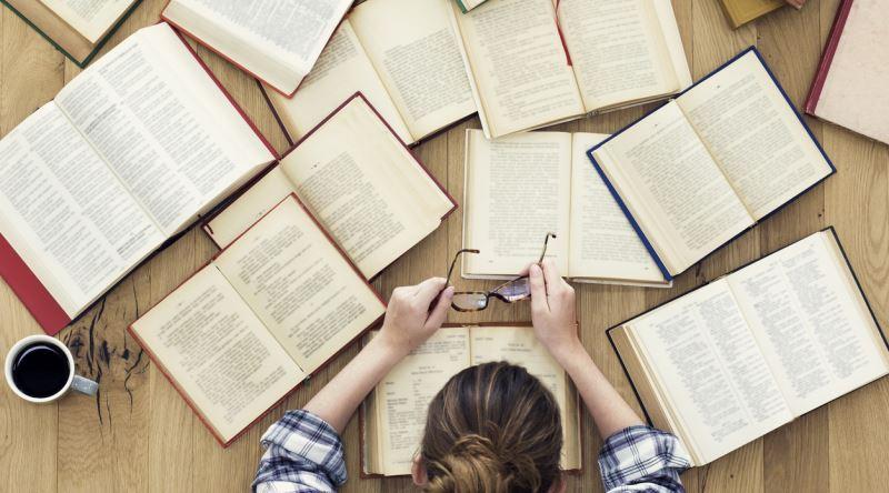 Öğrenim Gücü – Hollanda Mesleki Eğitim Sistemi – Essay – Ödev – Tez – Makale – Çeviri – Tez Yazdırma -Tez Yazdırma Fiyatları